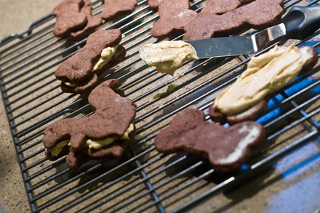 Doggie sandwich cookies